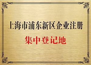 上海浦东新区注册公司流程